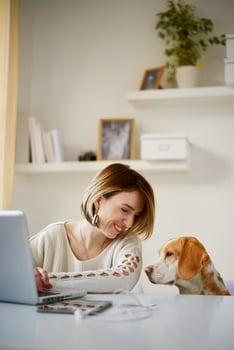 veterinary industry